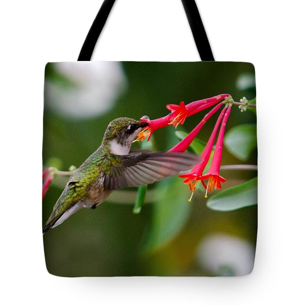 Hummingbird Feeding Tote Bag