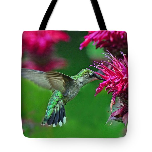 Tote Bag featuring the photograph Hummingbird Gathering Nectar by Rodney Campbell