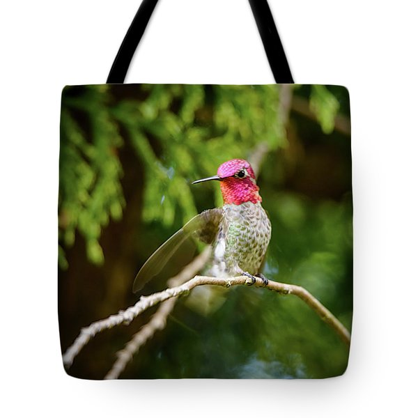 Tote Bag featuring the photograph Hummingbird Gorget by Kathy King