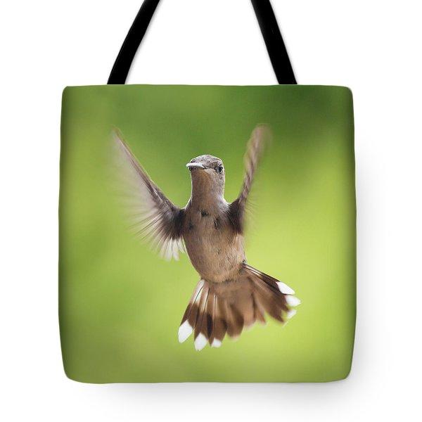 Hummingbird Hello There Tote Bag