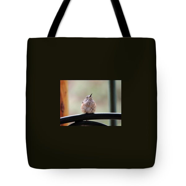 Baby Hummingbird Tote Bag