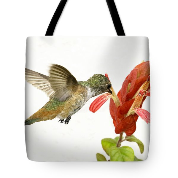 Hummingbird In The Flower Tote Bag