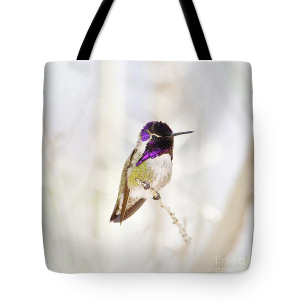 Hummingbird Larger Background Tote Bag by Rebecca Margraf