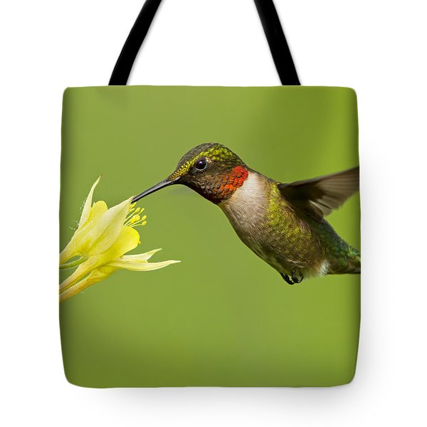 Hummingbird Tote Bag by Mircea Costina Photography