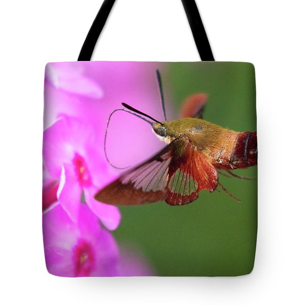 Hummingbird Moth Feeding 2 Tote Bag