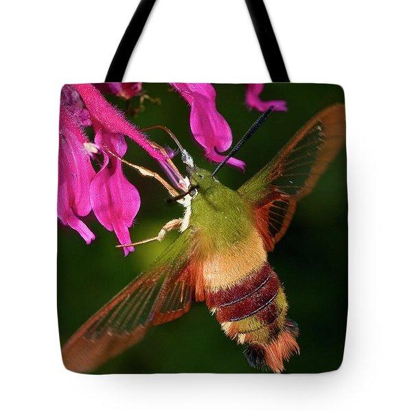 Hummingbird Moth Tote Bag