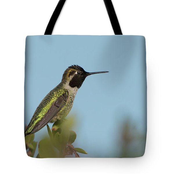 Hummingbird On Watch Tote Bag