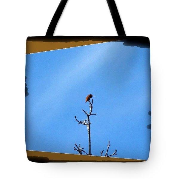 Hummingbird Optical Zoom Tote Bag