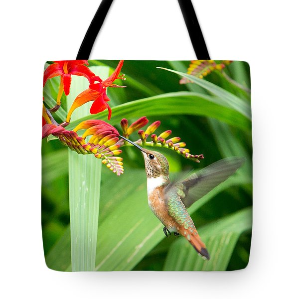 Hummingbird Snacking Tote Bag