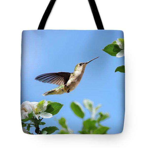 Hummingbird Springtime Tote Bag by Christina Rollo