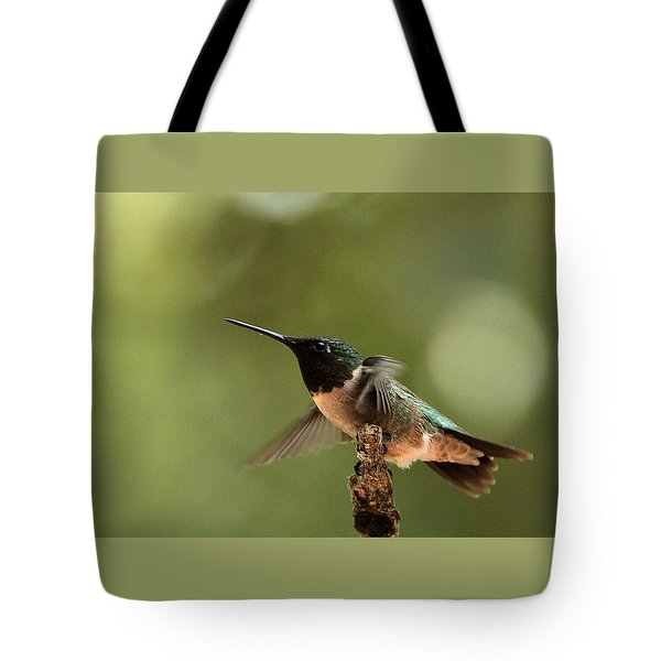Hummingbird Take-off Tote Bag by Sheila Brown