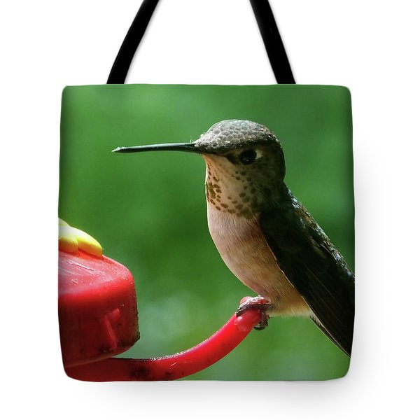 Hummingbird Takes A Break Tote Bag