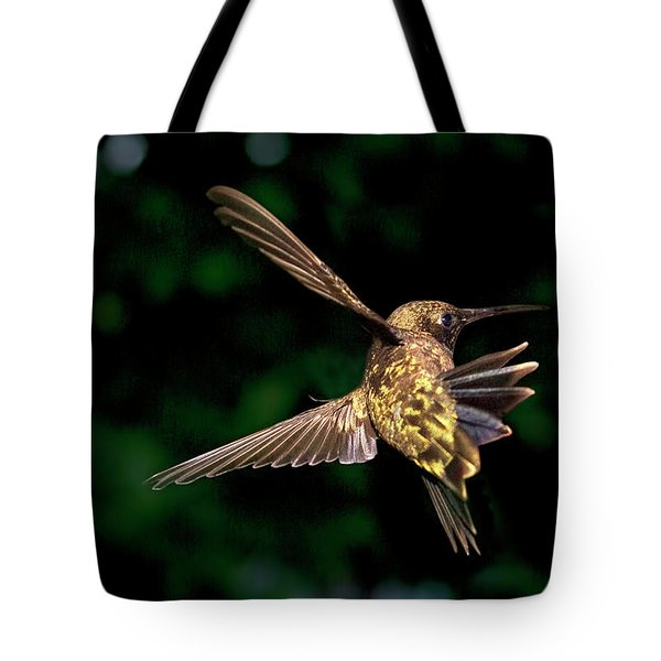 Hummingbird Taking Off Tote Bag