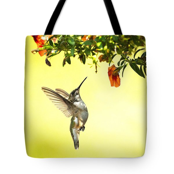Hummingbird Under The Floral Canopy Tote Bag
