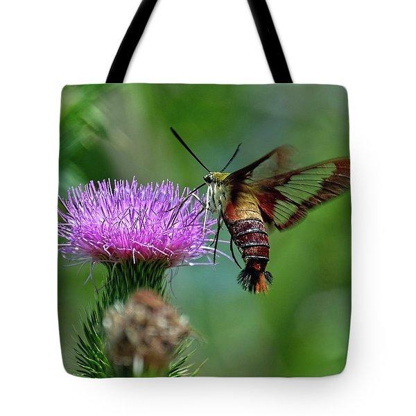 Hummingbirdbird Moth Dining Tote Bag