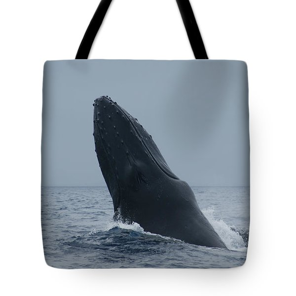 Humpback Whale Breaching Tote Bag