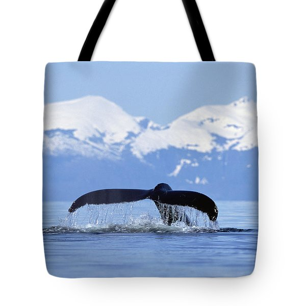 Tote Bag featuring the photograph Humpback Whale Megaptera Novaeangliae by Konrad Wothe