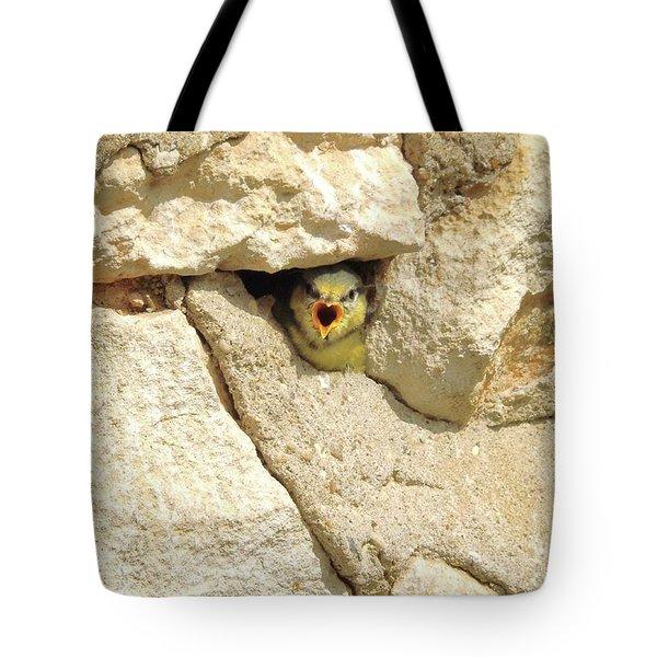 Hungry Chick Tote Bag