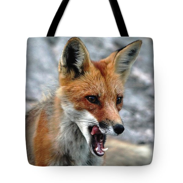 Tote Bag featuring the photograph Hungry Red Fox Portrait by Debbie Oppermann