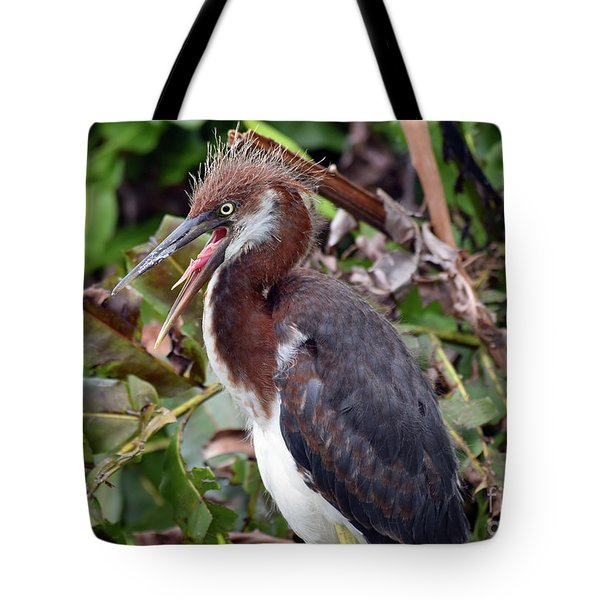 Hungry Tricolor Tot Tote Bag