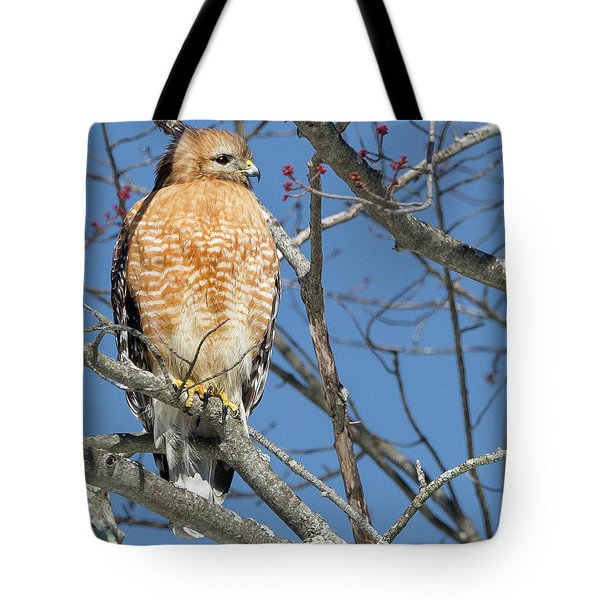 Tote Bag featuring the photograph Hunter Square by Bill Wakeley