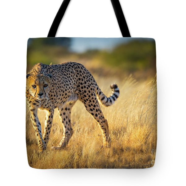Hunting Cheetah Tote Bag by Inge Johnsson
