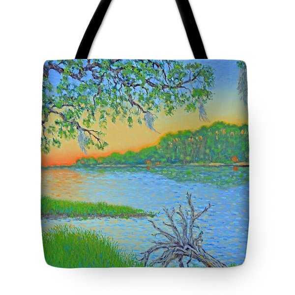 Tote Bag featuring the painting Hunting Island Lagoon 2 by Dwain Ray
