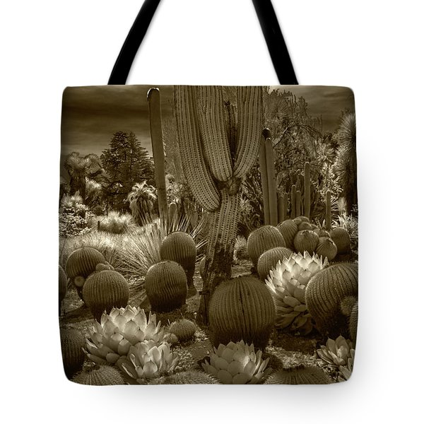 Huntington Botanical Desert Garden In California In Sepia Tone Tote Bag