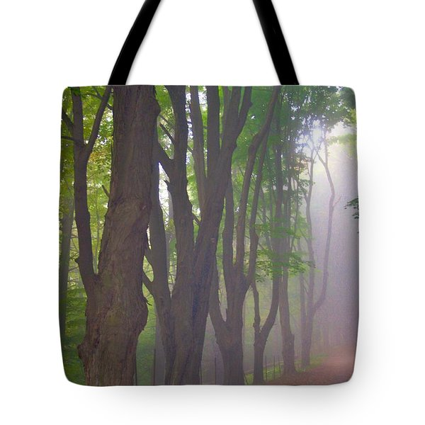 Huntington Mist  Tote Bag