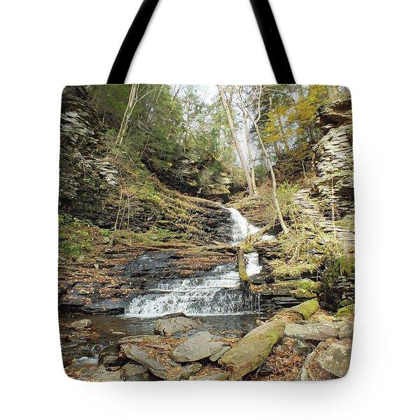 Huron - Ricketts Glen Tote Bag