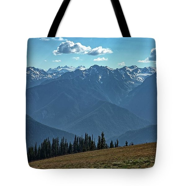 Hurricane Ridge Tote Bag