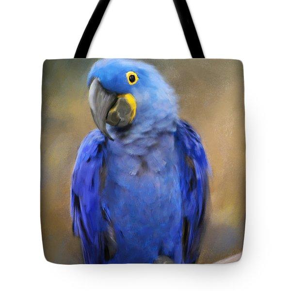 Hyacinth Macaw  Tote Bag by Jai Johnson