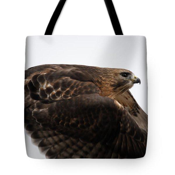 Hybrid Hawk Flyby  Tote Bag