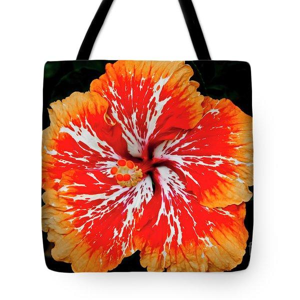 Hybrid Hibiscus II Maui Hawaii Tote Bag
