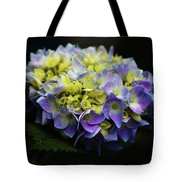 Hydrangea 3705 H_2 Tote Bag