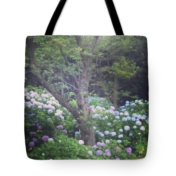 Hydrangea Flowers   Tote Bag