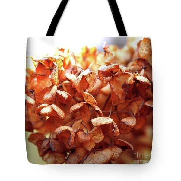 Hydrangea In Sunlight Tote Bag