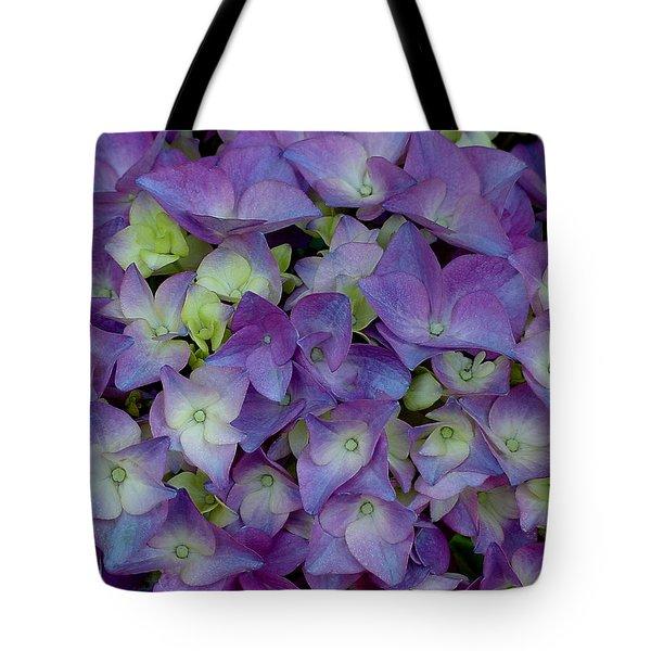 Hydrangia Blossom Tote Bag