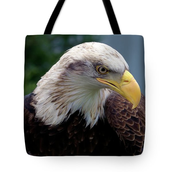 Lethal Weapon  Tote Bag by Stephen Melia