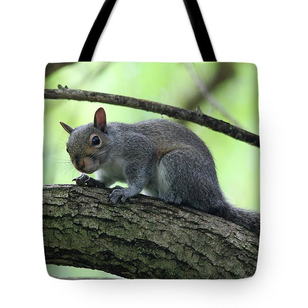 Tote Bag featuring the photograph I Am Watching You by Trina Ansel
