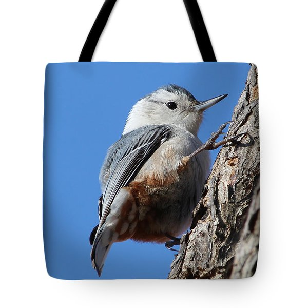 I Can Climb Too Tote Bag by Anita Oakley
