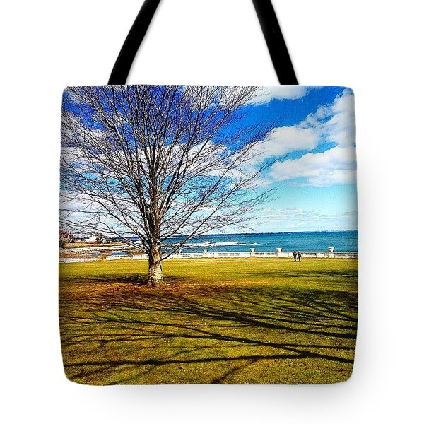 A Backyard View Tote Bag