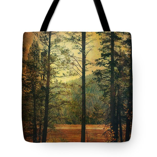 I Don't Know What To Believe In Tote Bag by Laurie Search