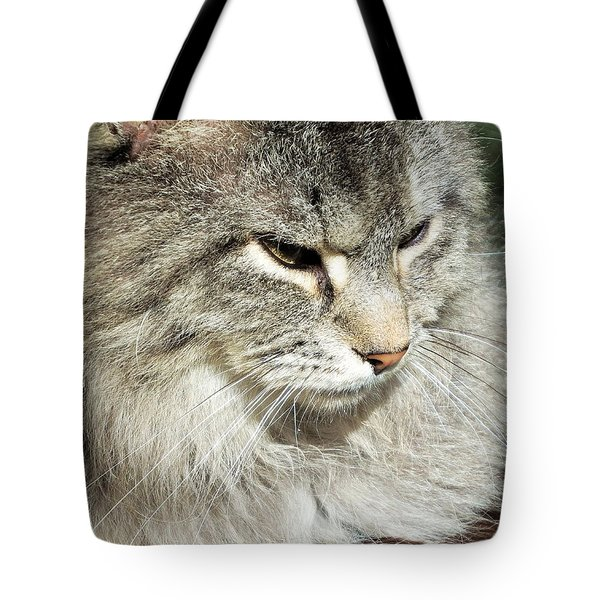 I Got My Eye On You Tote Bag by Cathy Harper