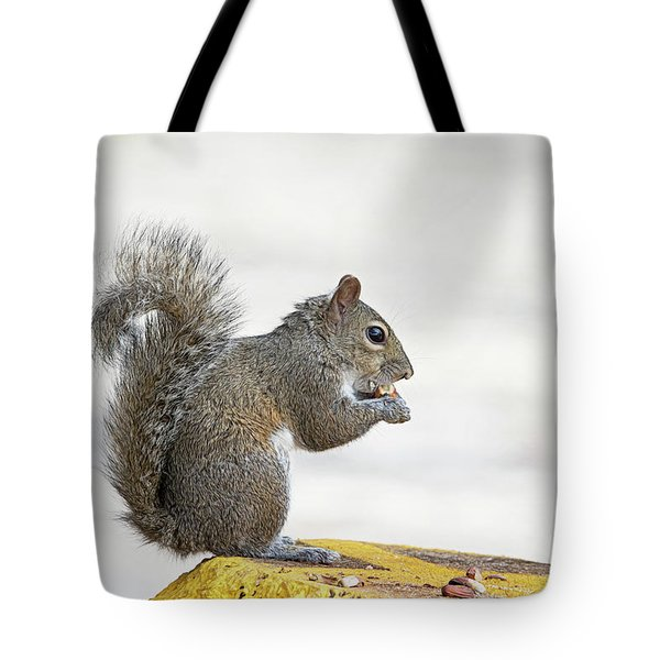 Tote Bag featuring the photograph I Have My Nuts by Deborah Benoit