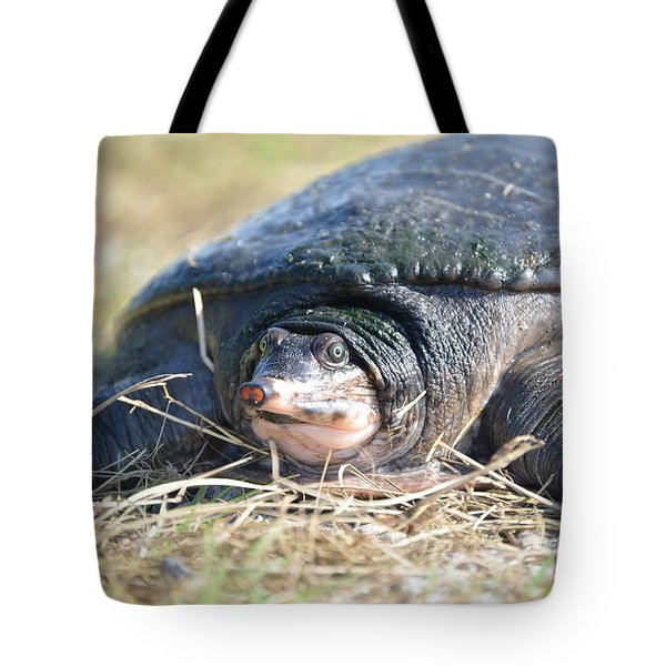 Tote Bag featuring the photograph I Havnt Seen You Before by Kathy Gibbons