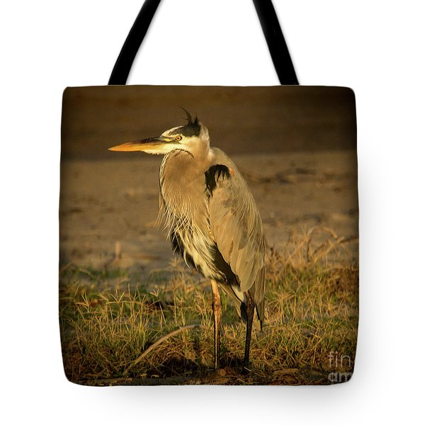 I Know They Are Coming Wildlife Art By Kaylyn Franks Tote Bag