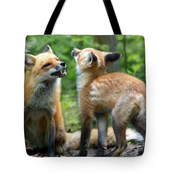 Tote Bag featuring the photograph I Like You Too by Dan Friend