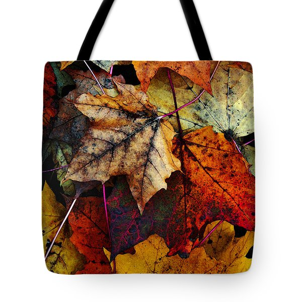 I Love Fall 2 Tote Bag