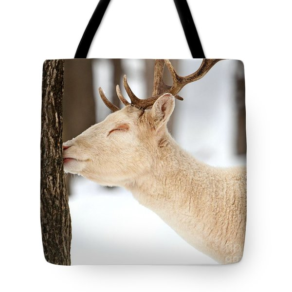 I Love This Tree Tote Bag